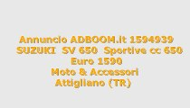 SUZUKI  SV 650  Sportive cc 650