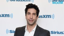 David Schwimmer Starring In New Drama 'Feed The Beast'