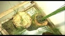 Programa Festas e Sonhos 25/07/2010 - 1ª parte