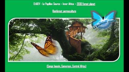 COP22 Rainforest permaculture - EL4DEV - Le Papillon Source Inner Africa 2