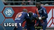 But Souleymane CAMARA (38ème) / Stade de Reims - Montpellier Hérault SC - (2-3) - (REIMS-MHSC) / 2015-16