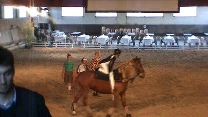 Le club le petit sam en sorti au haras d'Uzès pour un concours de spectacle equestre