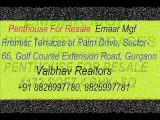 4BHK +SQ Penthouse For Resale in Emaar Mgf Premier Terraces  Golf Course Extension Road, Gurgaon +91 8826997781