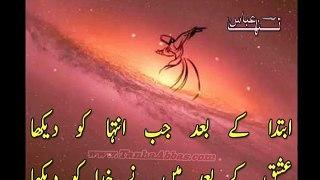 Dulhan Sad Poetry   Hath Me Lagakar Mahendi   Tanha Abbas