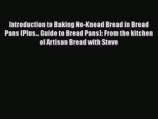 [Read Book] Introduction to Baking No-Knead Bread in Bread Pans (Plus... Guide to Bread Pans):
