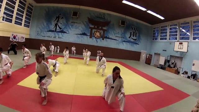 Taekwondo : La coiffure dans tous ses états (by David KODAT)