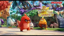Angry Birds - Bande annonce