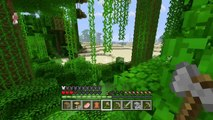 Minecraft Super Duper Deluxe Town