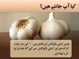 Health Benefits of Garlic Benefits Of Garlic - YouTube