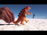 BOLIVIE : Lever de soleil sur le SALAR d'UYUNI -5-