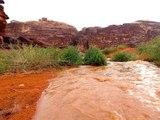 Jordanie - Randonnée à cheval dans le Wadi Rum : L'orage en plein désert