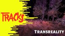 Trans-réalité - Tracks ARTE
