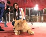 See What Capital Tv Host Rabi Pirzada Doing With Lion