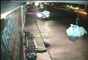 Billings thief caught on camera stealing flowers