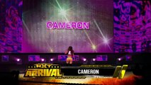 WWE 2K16 DIVAS All Finishers , Signature Moves and Tag Finishers (PS4 Gameplay)