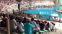 Waterworld - Universal Studios Singapore - YouTube