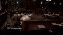 """Greys Anatomy 12x22 Arizona on the Stand - Court- Custody Fight """"Mama Tried"""""""