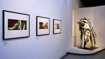 Entre sculpture et photographie, une nouvelle exposition au Musée Rodin à Paris jusqu'au 17 juillet.