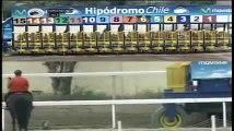 Accidente de ocho jinetes en Hipódromo Chile, oct.28.2010