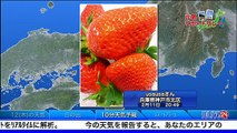 SOLiVE24 (SOLiVE トワイライト) 2015-02-12 04:33:28〜