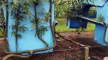 L'ecodesign ou l'art de faire pousser son propre mobilier de jardin !