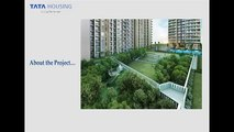 TATA Housing La Vida Gurgaon, Call Us- +91 8130 741 809