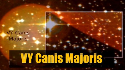 Top 10 Biggest Stars in the Known Universe