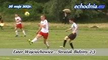 Ester Wojciechowice - Strażak Bidziny 2:3 - 26 maja 2013r.