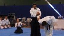 Aikido con Mori Shihan