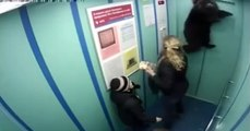 Dog is nearly hanged while Leash Gets Caught In Elevator Door