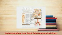 Download  Understanding Low Back Pain Anatomical Chart PDF Book Free
