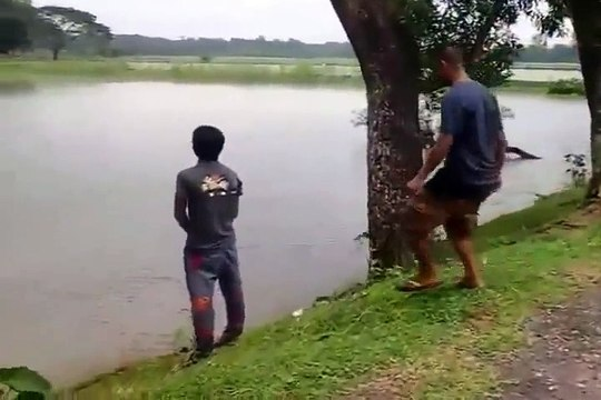 FUNNY VIDEOS COMPILATION 2015   FUNNY INDIAN WHATSAPP VIDEOS