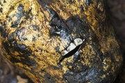 La Science se frotte aux momies dorées