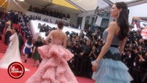 VU - Les plus belles poses de la montée des marches à Cannes - Le Petit Journal du 12/05 - CANAL +