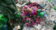 Alice de l'autre côté du miroir - Tim Burton présente - VO