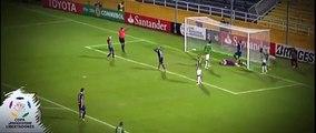 Increible atajada de Franco Armani vs Rosario Central Copa Libertadores 2016