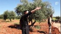 Les militants djihadistes en Syrie