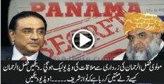 Fazul Ur Rehman Contacts Asif Zardari On Behalf On Nawaz Sharif - Video Leakes