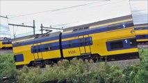 VIRM 9590 richting Rotterdam en VIRM 9568 richting Dordrecht passeren Kijfhoek, 25-9-2012