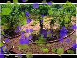 2013年4月28日再訪莫內的花園(music: LA CHANSON POUR ANNA)