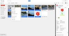Global Gallery (7a) - Google Drive public folders