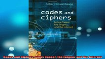 READ book  Codes and Ciphers Julius Caesar the Enigma and the Internet Free Online