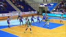 Andebol - FC Porto-Sporting, 33-25 (Andebol 1, 3.º e 4.º lugares, j. 2, 15-05-16)