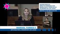 Intervención diputada Turres en sesión especial por crisis en Los Lagos