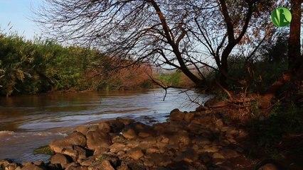 Música de Sono: Música Relaxante, Música para Meditação com Água Corrente