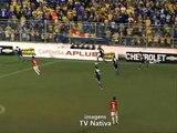 17/11/2013 - Pelotas 1x1 Internacional (Boca do Lobo) Nos pênaltis: Pelotas 7x6 Internacional FINAL