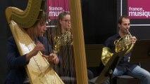 Manuel de Falla : La danse du feu (extrait de l'Amour sorcier) par l'Ensemble Appassionato & Hugues Borsarello  I Le live de la matinale