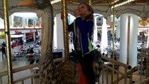 Ostrich Merry Go Round