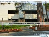 36750 Us Highway 19 Hwy N # 213 Palm Harbor Florida