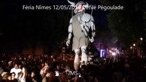 Défilé-Pégoulade-Féria-Nîmes-12/05/2016